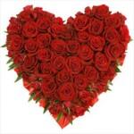 rózsa_szív